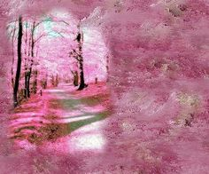 Reflections of Light        The lighted path may at times feel like darkness.....      Even then one is being led forward  by an unseen Hand and an unseen Heart.  Clarity Pinkish Awe