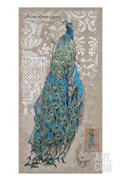 Peacock on Linen 1 Art Print by Chad Barrett at Art.com