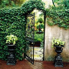Open or closed, garden gates always say welcome. Whether you opt for wrought-iron or classic white pickets, charming garden gates can add character to your exterior design. Garden Doors, Garden Gates, Garden Entrance, Garden Urns, Balcony Garden, The Secret Garden, Secret Gardens, Hidden Garden, Dream Garden