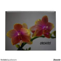 #nature #photography #flowers #floral #orchids #phalaenopsis #tropical #calendars Check more at www.zazzle.com/julianarw