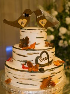 If you are planning a fall wedding and maybe you haven't decided what cake to order. Here are great ideas to different kinds of fall wedding cakes.