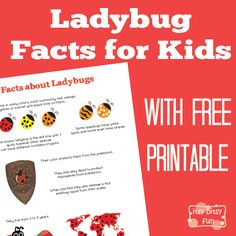 FREE-Ladybug Facts for Kids... Ladybugs are one of the most adorable bugs there is (certainly a million times cutter than spiders - which I am dead scared off). They are said to be lucky...