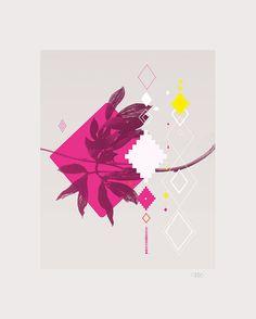 illustration-touareg-deco