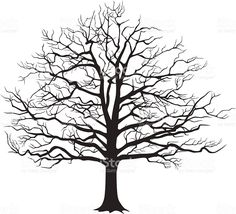 Malvorlage Baum Ohne Blätter Malen Pinterest