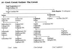 Cinel Conail Gulban - Tir Conail