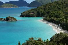 Virgin Islands News : Whales, Whales, and more whales -- around St ...
