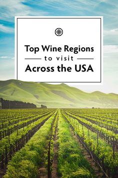 Top wine regions to visit across the USA travel destinations Travel Vacation List Holiday Tour Trip Destinations Usa Travel Guide, Travel Usa, Travel Guides, Travel Tips, Travel Articles, Canada Travel, Travel Hacks, Cool Places To Visit, Places To Travel