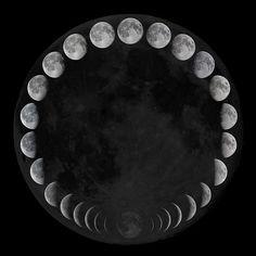 Moon Cycle. ☚