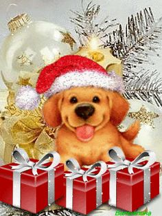 Christmas blessings and love to you Dog Christmas Pictures, Christmas Puppy, Merry Little Christmas, Noel Christmas, Christmas Animals, Merry Christmas And Happy New Year, Christmas Images, Christmas Cats, Winter Christmas