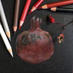 Гранат Иллюстрация цветными карандашами на черной бумаге Colored pencils illustration on black paper ботаническая иллюстрация Botanical illustration