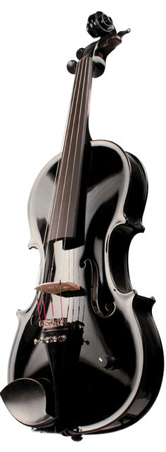 I would not be able to live without my violin or music in general. (15) #ElectricViolin