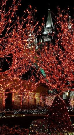 Christmas lights at the Salt Lake LDS Temple, Utah