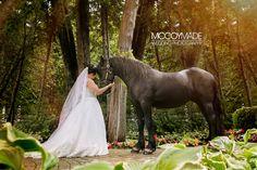 Mackinac Island bride with a friesian horse. #MackinacIslandWedding #marriedonMackinac #brideandhorse #friesianhorse #McCoyMadePhotography #MackinacIslandWeddingPhotography