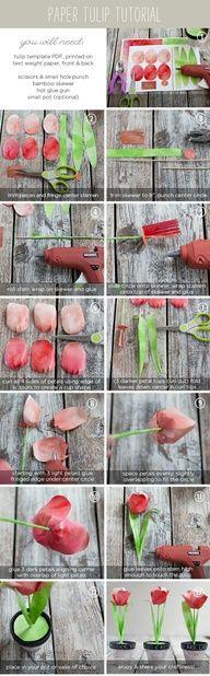 http://www.ellinee.com/blog/paper-tulip-printable-tutorial/