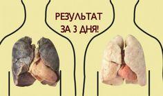 Каждая затяжка сигаретой, которую вы делаете, повреждает органы вашей дыхательной системой. Вы становитесь более уязвимыми перед болезнями. Но что, если вы, наконец, готовы бросить? Вы наверняка захотите как...