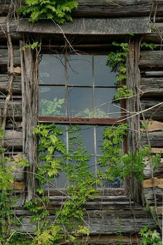 Old Cabin window..