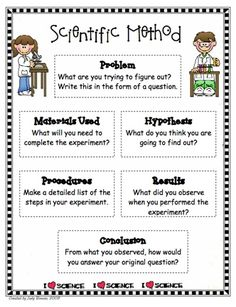 scientific method 2nd grade | scientific method worksheet | Teaching ...