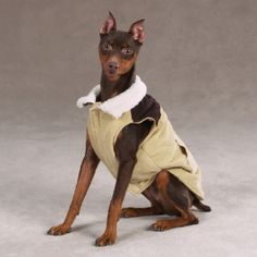 Sleeveless Corduroy Vest - Winter Dog Coat