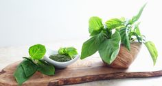 low sodium basil pesto recipe