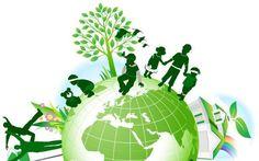 Lingkungan Bersih Hidup Sehat