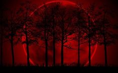 Blood Red Moon Blood Red Moon, Halloween 1, Celestial, Sunset, Painting, Outdoor, Art, Sunsets, Outdoors