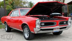 Thumbs up for this 1966 Pontiac GTO?