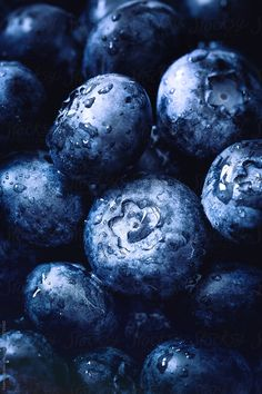 Stock photo of Blueberries by FedericaDM Cool Art Drawings, Realistic Drawings, Colorful Drawings, Art Drawings Sketches, Fruit Photography, Close Up Photography, Reference Photos For Artists, Art Reference, Pictures To Draw