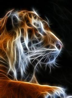 Tiger Fractal 2 by Shane Bechler IncrediblePhotoArt.com