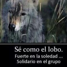 Frases interesantes! ghyslayneastrologiatarot.blogspot.mx