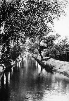 To really understand Phoenix, you have to find the canals. The canals bring water into Phoenix for agriculture, irrigation, and for the daily needs of everyone who takes a shower, or... http://www.historyadventuring.com/2017/01/canals-laterals-and-storm-drains-in.html