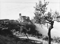 Elio Ciol     #TuscanyAgriturismoGiratola