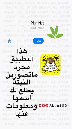 Funny Mom Jokes, Mom Humor, Iphone Photo Editor App, Eid Stickers, Study Apps, Night Sky Wallpaper, Iphone App Layout, Anime Backgrounds Wallpapers, Learning Websites