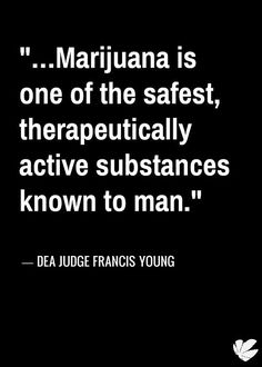 "Cannabis Quote: ""...Marijuana is one of th safest, therapeutically active substances known to man."" --- DEA Judge Francis Young  