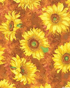 Slice of Sunshine - Painted Sunflowers - Terra Cotta