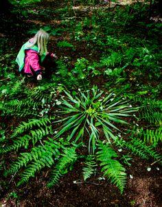 Alexandra Hedberg: land art workshop with preschool