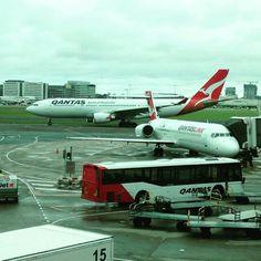 Qantas transfer bus, Sydney Airport @joshrodgers22