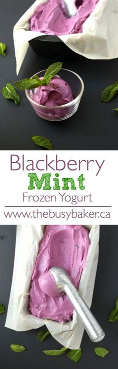 This Blackberry Mint Frozen Yogurt is super healthy and SO easy to make! Perfect for summer! www.thebusybaker.ca