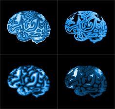 NIN-KNAW Competition 2018 (Neuroscience) Neuroscience, Peace Of Mind, Competition, Neurology