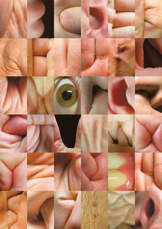 """Body Alphabet. """"If you cast your eye up to the sky or down to the ground, there's an excellent likelihood you'll discover something that either looks like a letter or actually is one,"""" the authors write. PIOTR GAJEWSKI, GRZEGORZ SAMSON"""