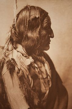 Little Wolf - Cheyenne 1905 by Museum of Photographic Arts Collections