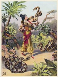 Snake Charmer  1889