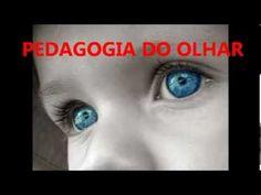 PEDAGOGIA DO OLHAR   RUBEM ALVES