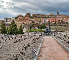 Un lujo tener un museo de la cultura del vino tan cerca. Must see @vivancoculturadevino #Rioja #turism #winetours #travel #wine #winelover #turismo #enoturismo #experience #winetastelovers #riojawine #gastronomía #visitSpain #vino #viaje#tapas #winetasting #instariojawine #gastronomy #instawinetours #winecountry #wineries #worldplaces #winetrip #winetravel#viajar #grapevines #winetourism #wineregion #lp
