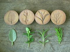 Stoneware Herb Magnets set of 4 by NSPottery on Etsy, $24.00