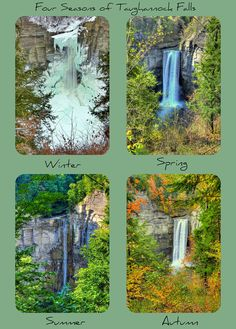 Four seasons collage of Taughannock Falls State Park near Ithaca, New York.