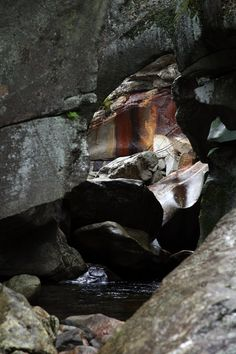 """The Next Step - Picture of the Day: 10/21/11 - """"Grafton Notch State Park"""" In Newry, Maine."""