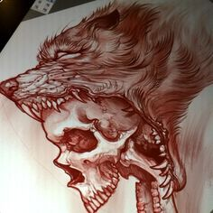Lobo+craneo