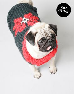 Hot Dawg Sweater for Pugs and other dogs