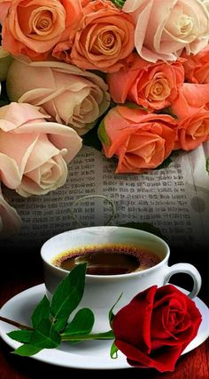 Check out photo effects collection by Tudora Stemate on Photo Lab Cool Coffee Cups, Coffee Love, Coffee Art, Good Morning Coffee Gif, Good Morning Images, Good Morning Flowers, Good Morning Wishes, Coffee Photography, Chocolate Coffee
