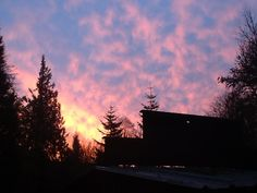 Sunrise over my garden in Acme, WA